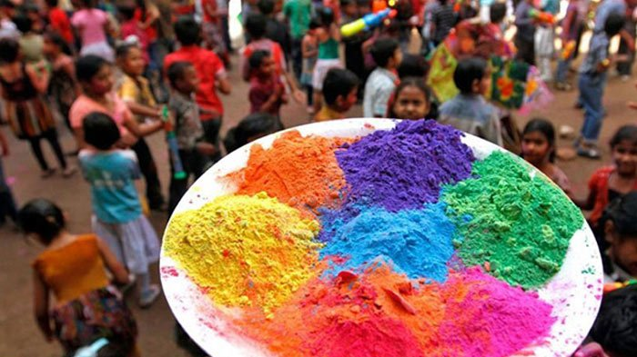 Gulal / Holi Colors